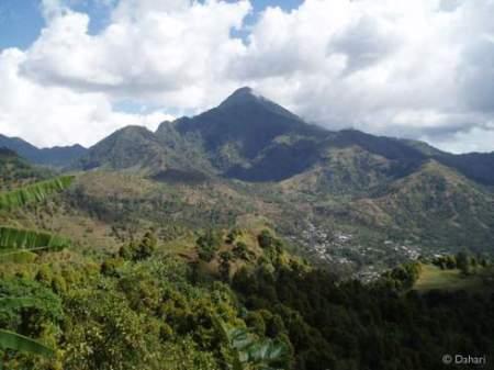 Aperçu de la déforestation aux Comores