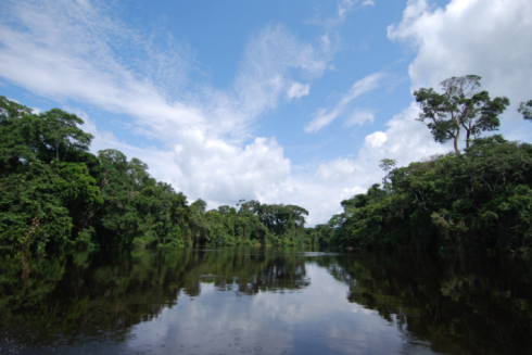 Gabon is on its way to making benefit sharing happen