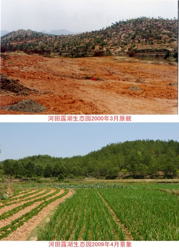 Figure 1: The comparison photos in Hetian village in Changting. The top picture is taken in 2000 and the bottom picture is taken in 2009.