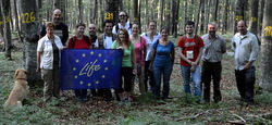 LIFEGENMON Project team at the other a forest genetic monitoring plot in Slovenia