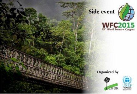 WFC-GLF-roadmap-event-post1