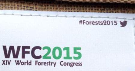 forests2015 team