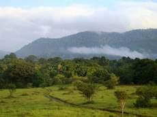 The North Rupununi landscape